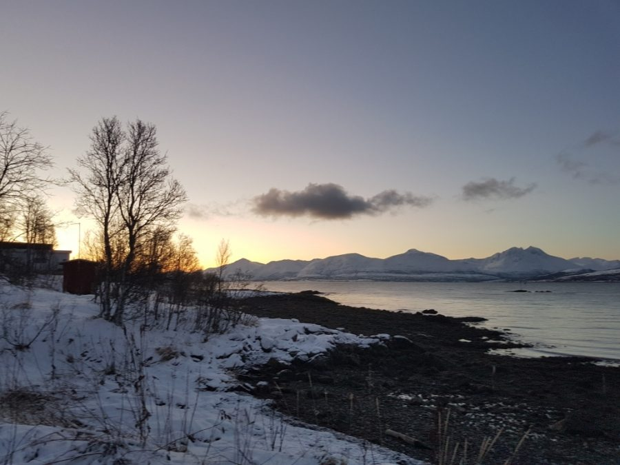 Top things to do in Tromso Norway www.whatsupcourtney.com