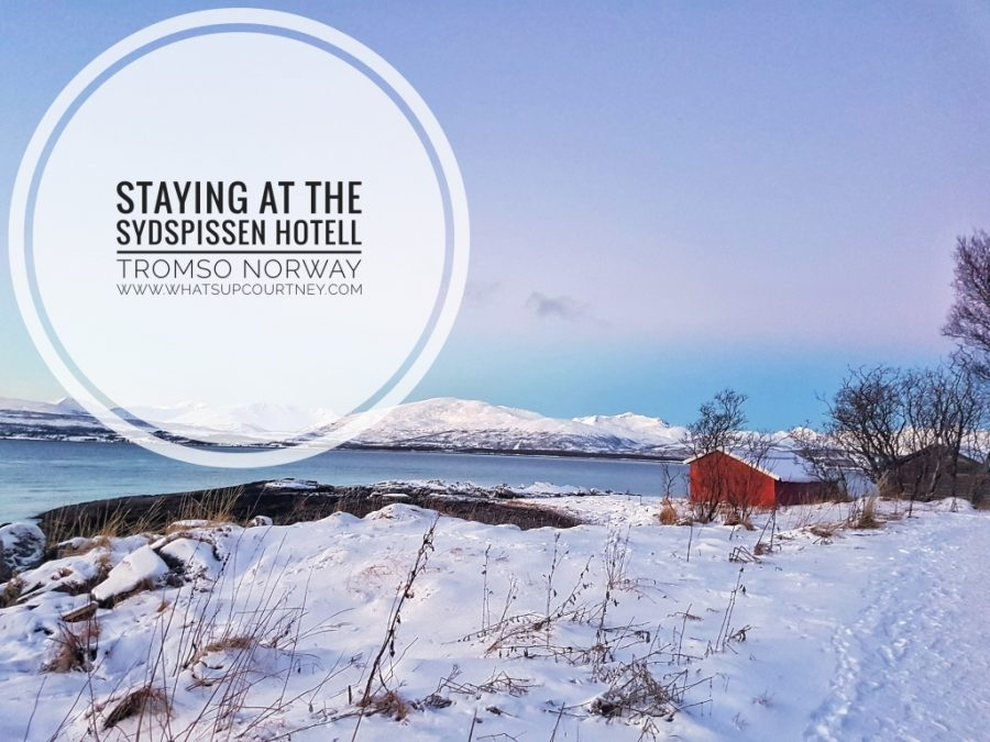 Sydspissen Hotell Review Tromso Norway www.whatsupcourtney.com