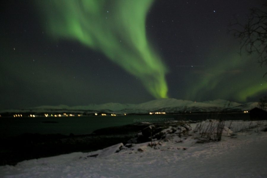 Things to do in Tromso Norway www.whatsupcourtney.com