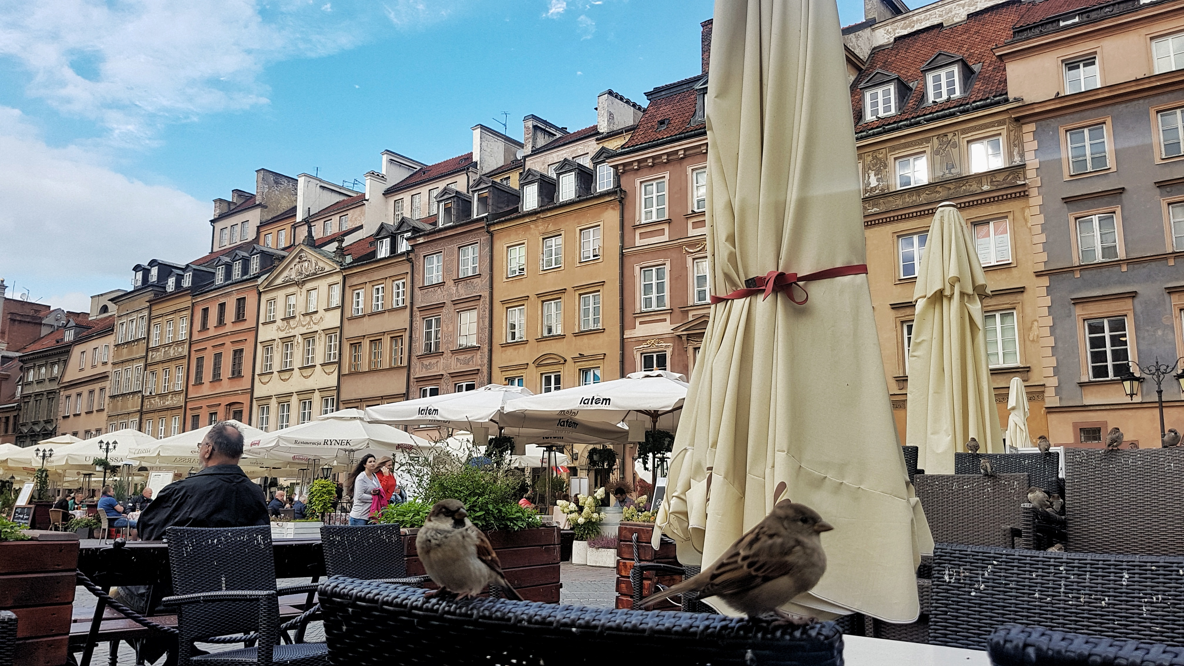 Your guide to Royal Route Warsaw Poland