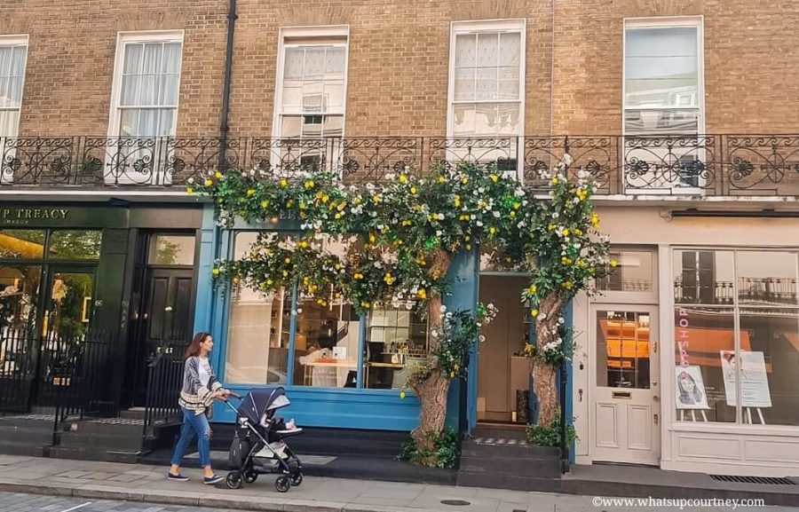 Floral store arrangements on Elizabeth St in Belgravia London Guide ->www.whatsupcourtney.com #London #belgravia #londonguide #travel #travelguide