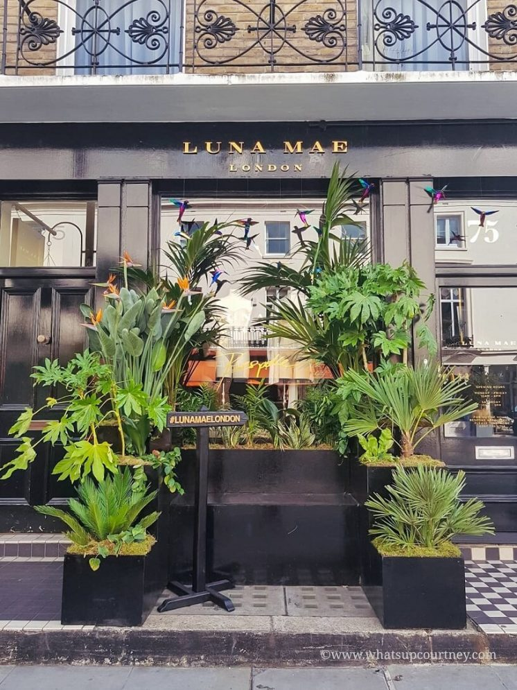 Floral arrangements outside of Luna Mae on Elizabeth St in Belgravia London Guide ->www.whatsupcourtney.com #London #belgravia #londonguide #travel #travelguide