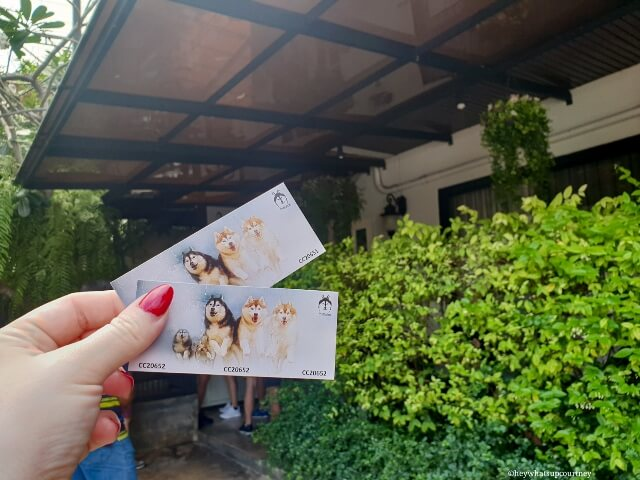 Entry tickets to Husky Cafe True Love at Neverland Bangkok in Thailand - Read more at heywhatsupcourtney Huskies at the husky cafe Truelove at Neverland - read more at whatsupcourtney.com #huskies #husky #bangkok #thailand #travel #siberianhusky
