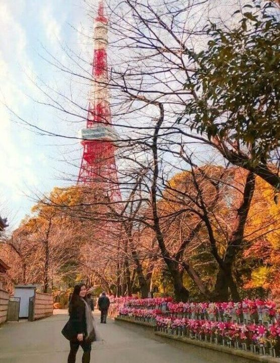 View of Tokyo Tower from Zozoji Temple at Roppongi district in Tokyo - Read more at www.whatsupcourtney.com